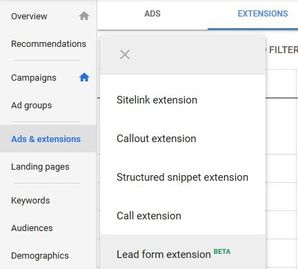 lead form extension beta google ads